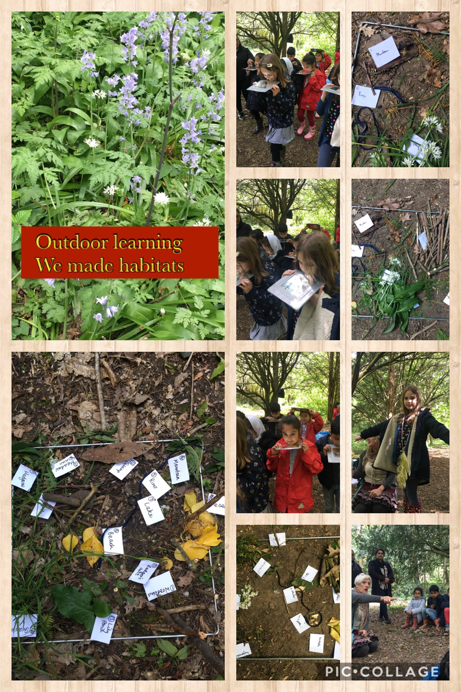 During outdoor learning we made mini habitats. Click on the picture above to link to a website where you can find out more about habitats.