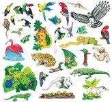 Rainforest animals.jpg