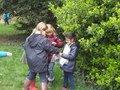 Seed Activity at Staunton Country Park.JPG