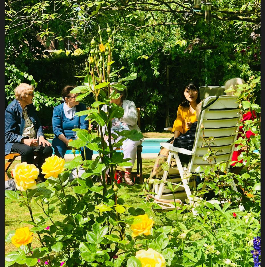 Herbert garden 2019