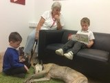 Willow Pet Dog Therapy Pic 11 18.7.19.JPG