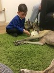 Willow Pet Dog Therapy Pic 12 18.7.19.JPG