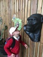 Year 3 Zoo trip