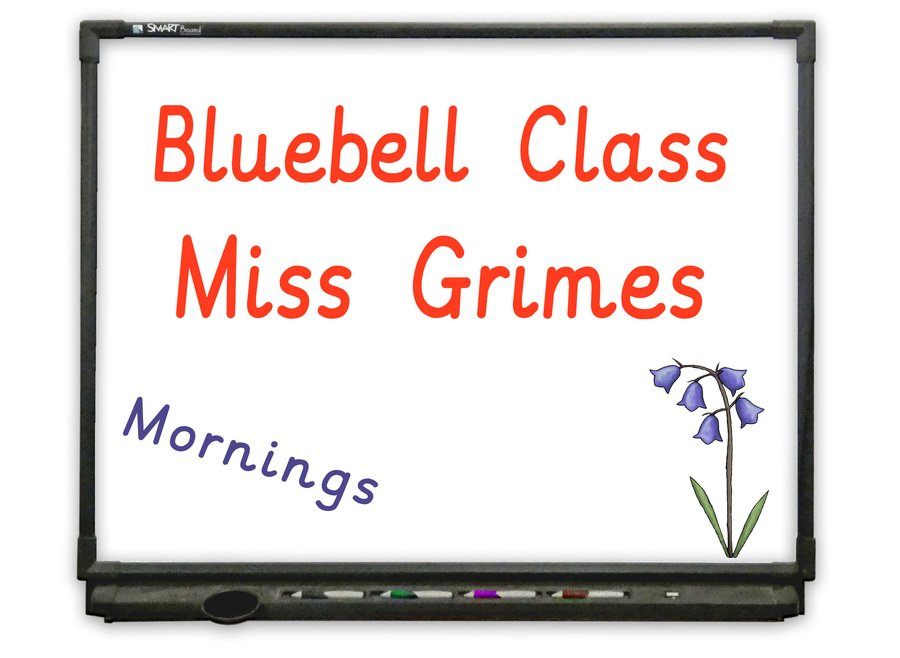 Morning Nursery - Go to Bluebell Class