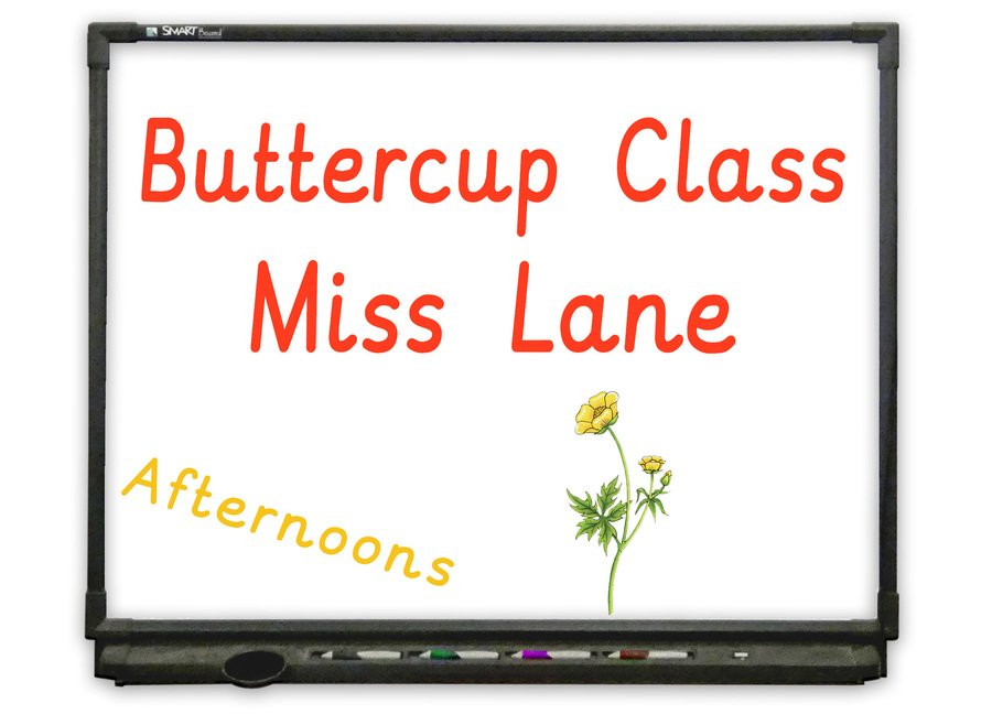 Afternoon Nursery - Go to Buttercup Class