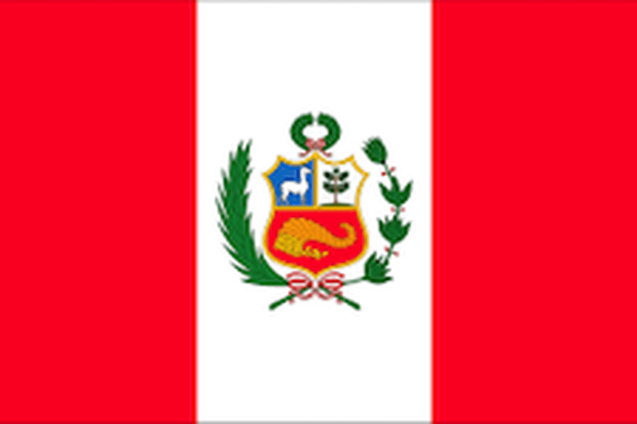 YEAR 6 (PERU)