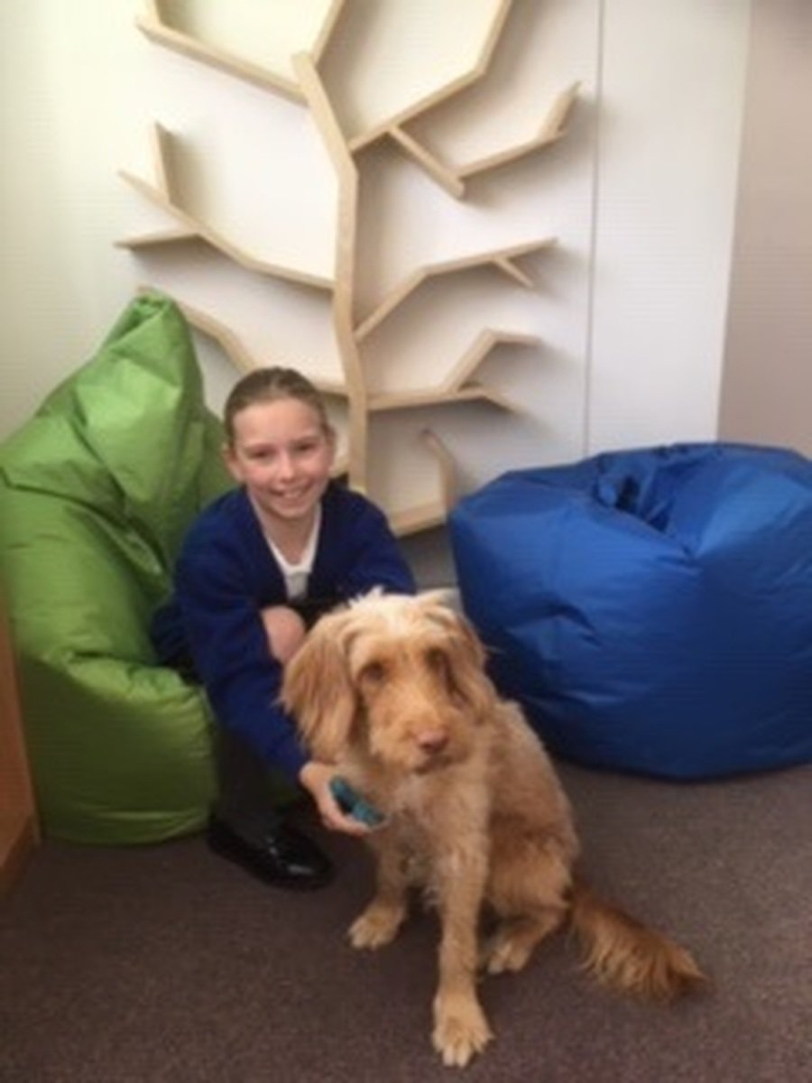 Cuddles with Lola our School Dog