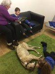 Willow Pet Dog Therapy Pic 05.JPG