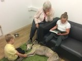 Willow Pet Dog Therapy Pic 20.JPG