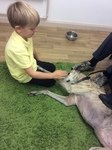 Willow Pet Dog Therapy Pic 21.JPG