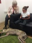 Willow Pet Dog Therapy Pic 22.JPG
