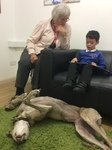 Willow Pet Dog Therapy Pic 27.JPG