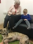 Willow Pet Dog Therapy Pic 28.JPG