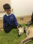 Willow Pet Dog Therapy Pic 29.JPG