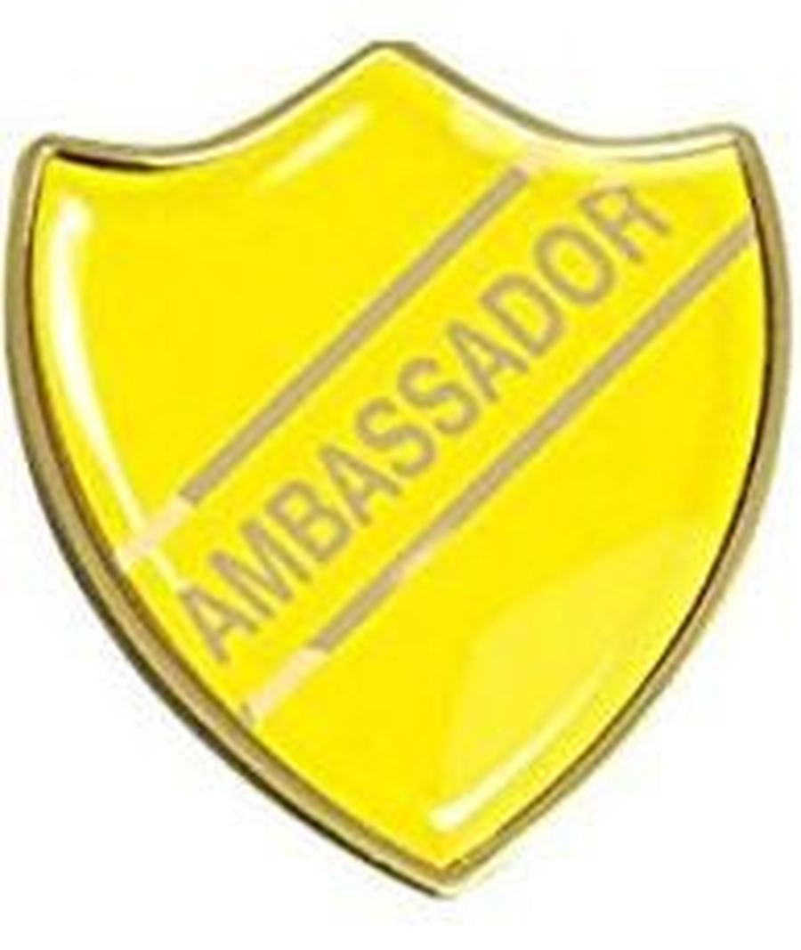 Curriculum Ambassadors