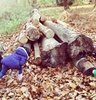 Forest School<br>