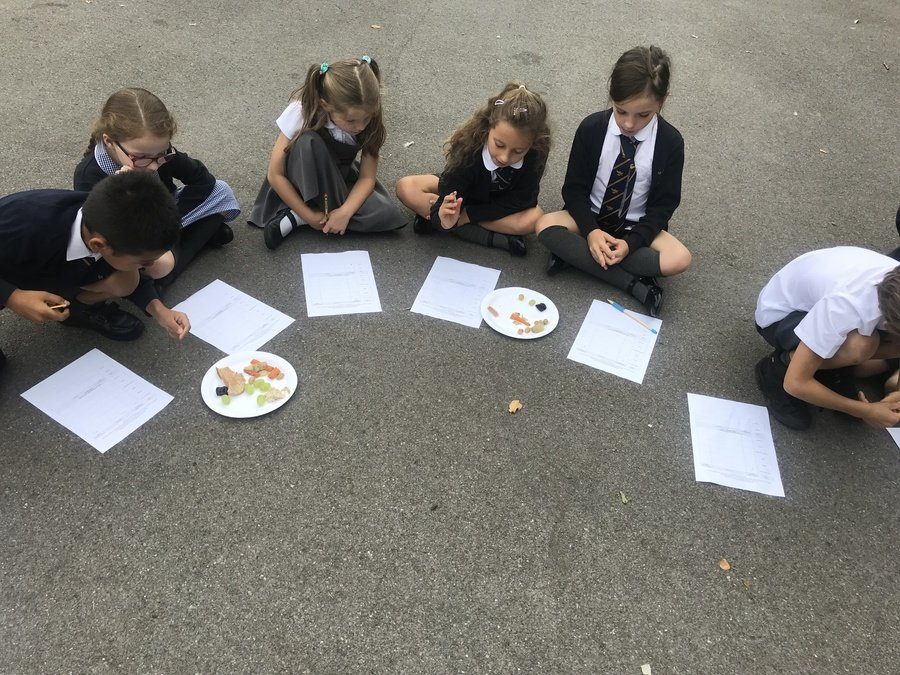 They tried a selection of different foods and rated them out of 10!