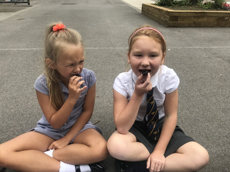 The girls didn't really enjoy the dates!