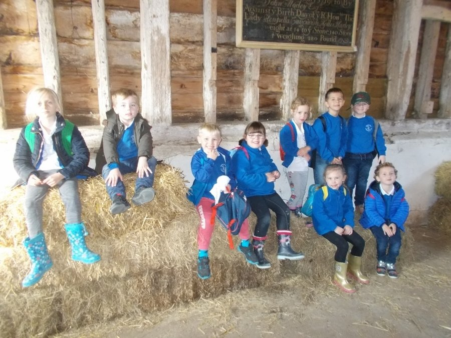 Maple Class visited Wimpole Farm