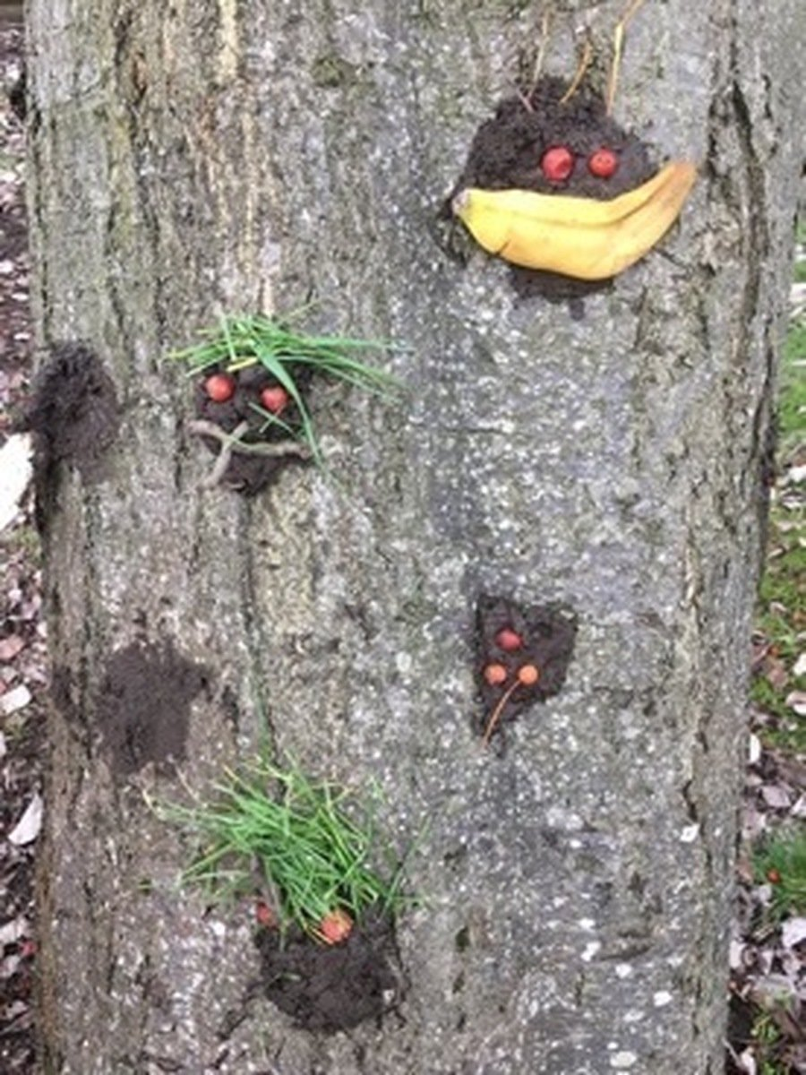 'Muddy tree faces' - art using natural objects.