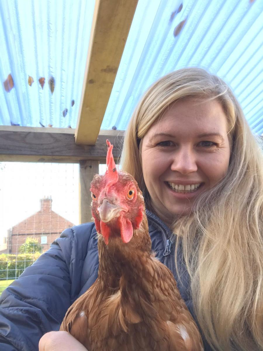 Happiness is chickens
