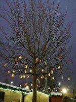 Lanterns at The Mall 2.jpg