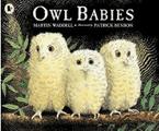 Owl Babies.png