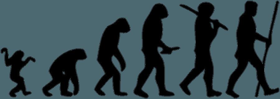 Evolution & Inheritance