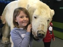 Polar bear (4).JPG