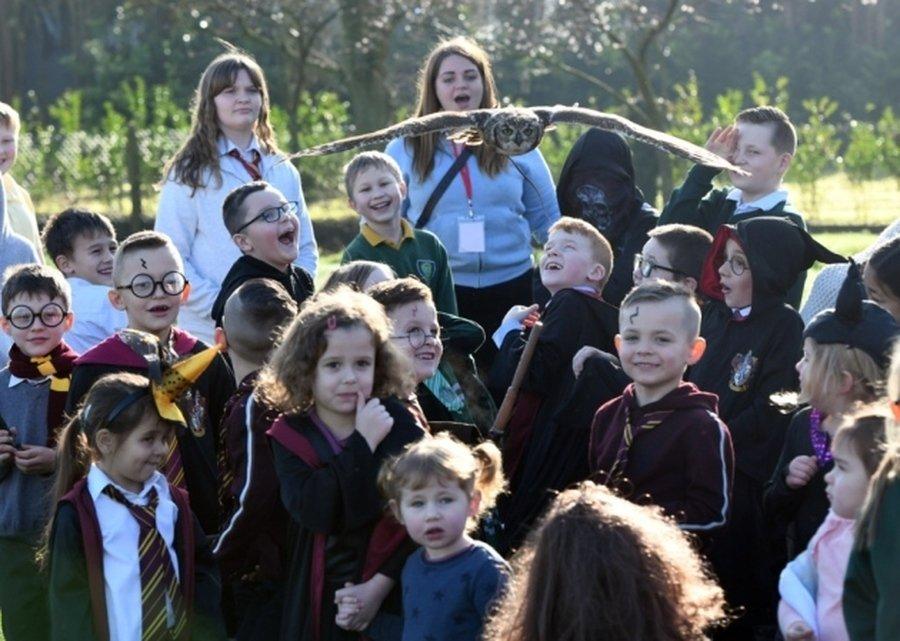 Headwig at Kinderley