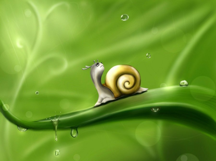 "Image by <a href=""https://pixabay.com/users/Larisa-K-1107275/?utm_source=link-attribution&amp;utm_medium=referral&amp;utm_campaign=image&amp;utm_content=83672"">Larisa Koshkina</a> from <a href=""https://pixabay.com/?utm_source=link-attribution&amp;utm_medium=referral&amp;utm_campaign=image&amp;utm_content=83672"">Pixabay</a>"