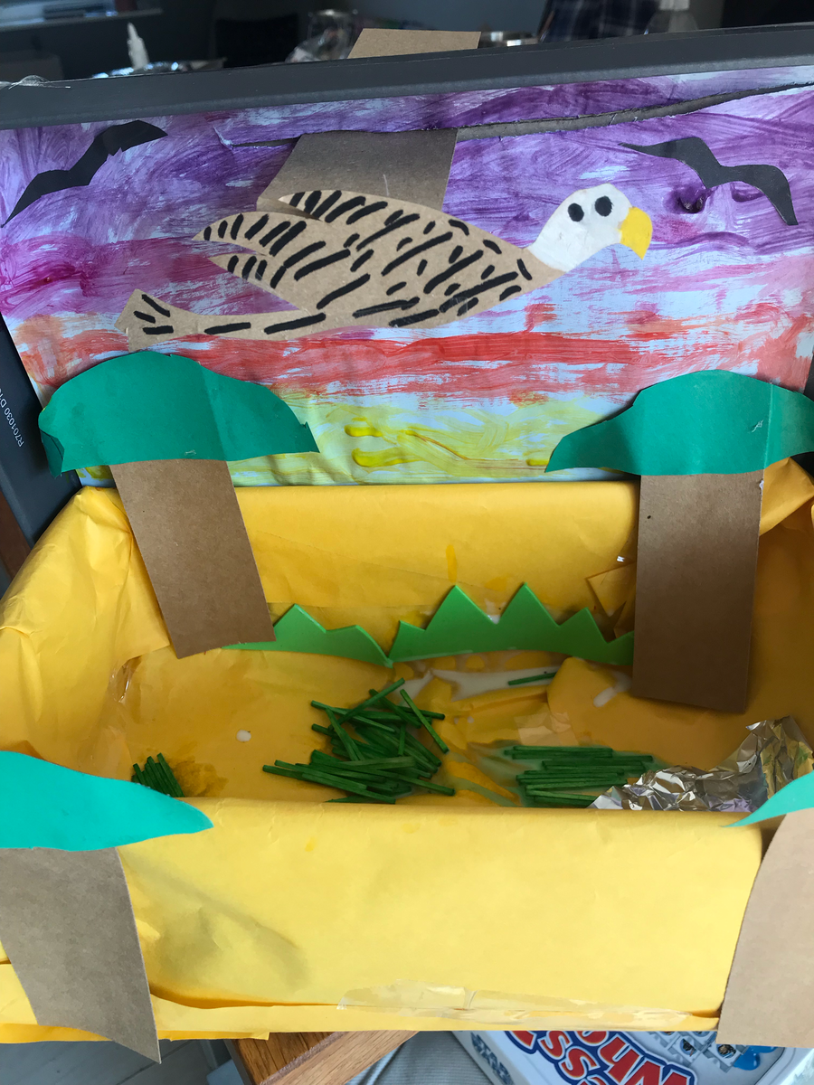 This is Sami's habitat box. His vulture is on a slider, so it can move across the sky.
