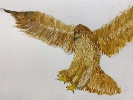 Eva's Eagle Artwork