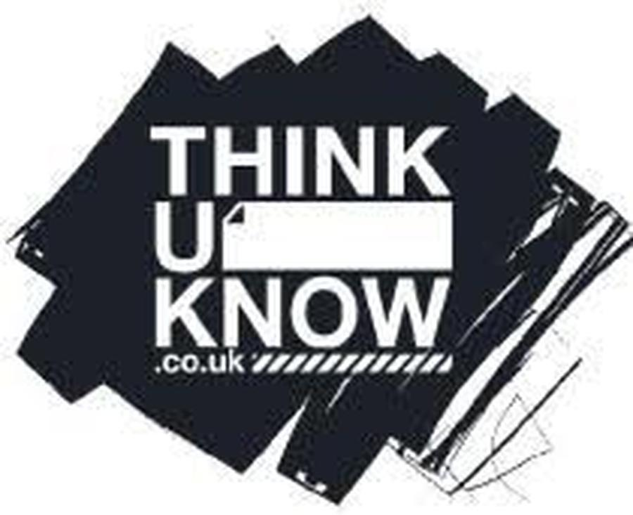 Thinkyouknow(advice from the National Crime Agency to stay safe online)