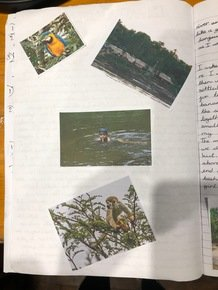 Noor Island page 2.JPG