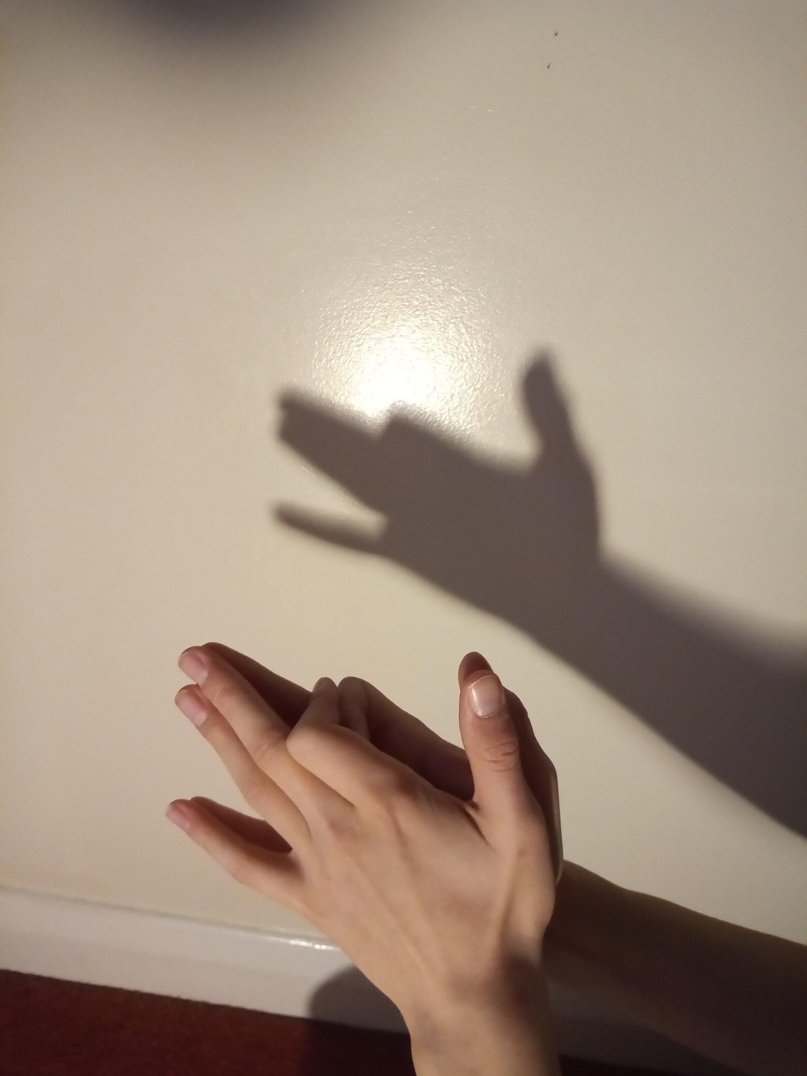 Seth's shadow puppet