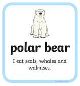 science polar bear.PNG