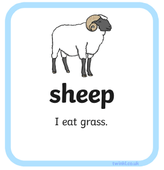 science sheep.PNG