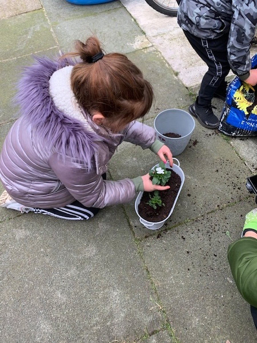 Ruby (Y2) doing some planting