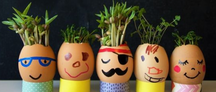 Egg head planters.png