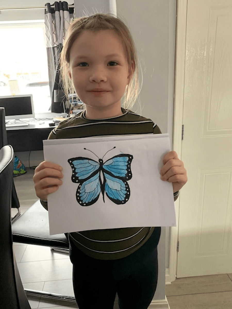 Amy Walker (year 5) Blue Morpho art