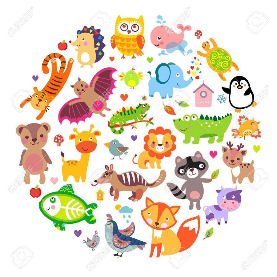 Animals of the World