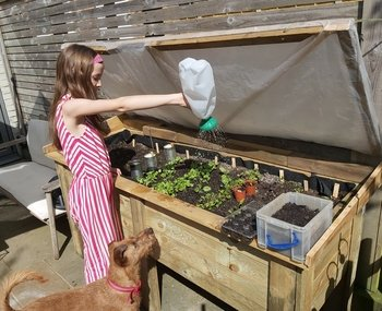 Alice watering the salad vegetables she planted