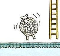 1 scared sheep.JPG