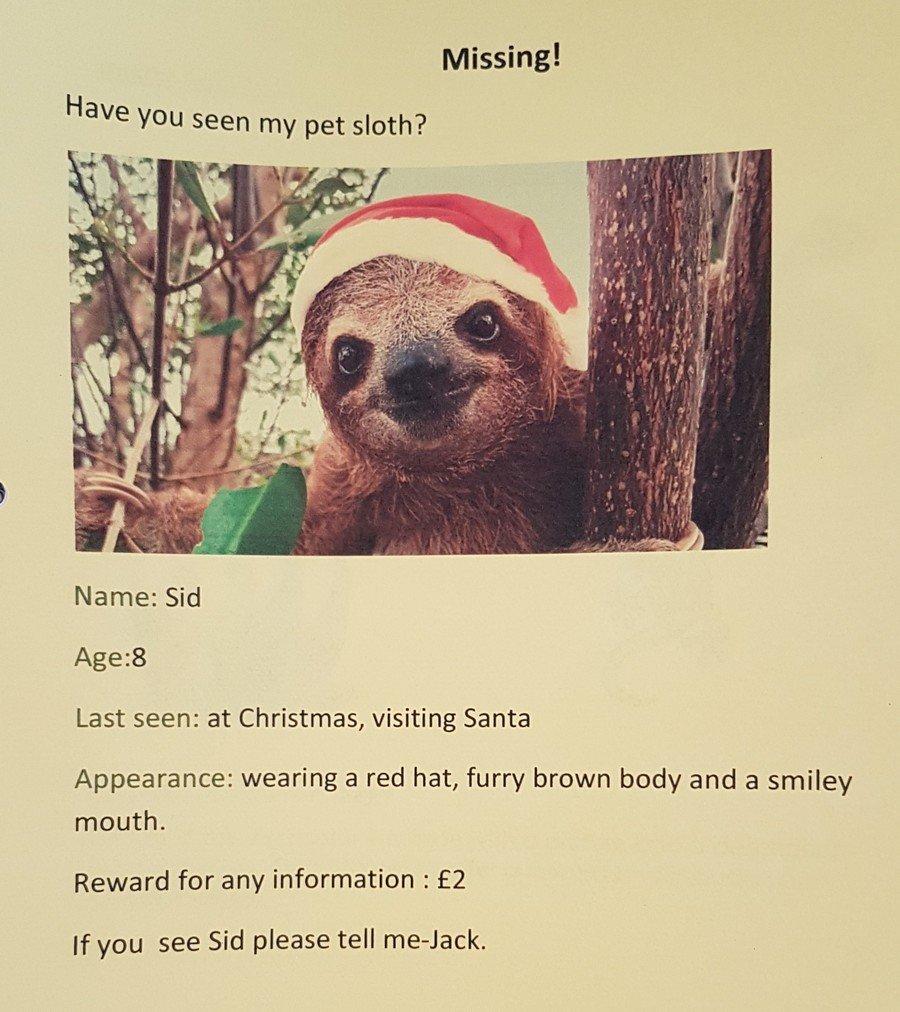 Jack's Missing Pet Poster.