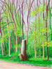 David Hockney 3.PNG