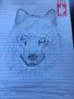 wolf pr.png