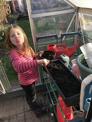 A very cheeky Evie potting in the greenhouse.