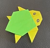 subhaans turtle 2.png