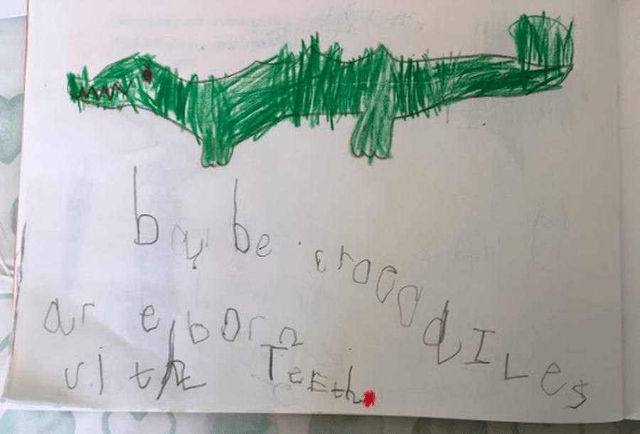 We love this crocodile by Kyle!